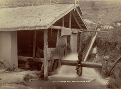 Water mill for grinding rice